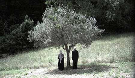 A White Ballad by Stefano Odoardi