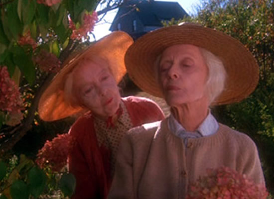 Bette Davis, Lillian Gish, The Whales of August
