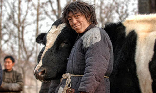 Huang Bo in The Cow