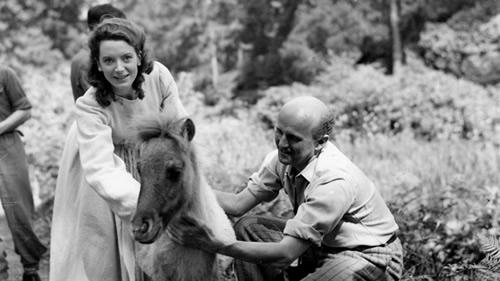 Deborah Kerr, Michael Powell, pony