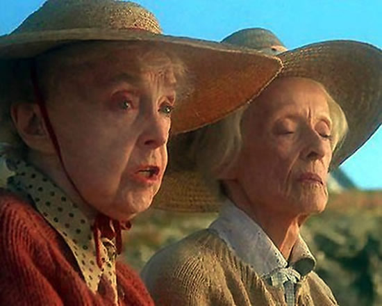 Lillian Gish, Bette Davis movie The Whales of August