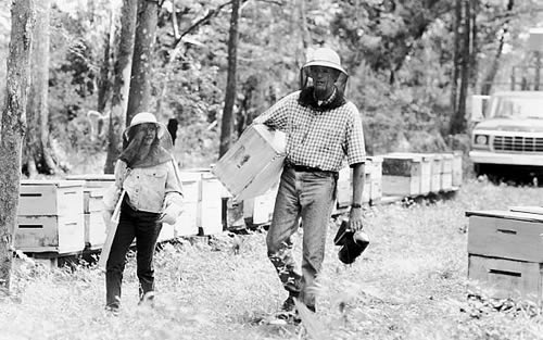 Peter Fonda, Vanessa Zima, Ulee's Gold