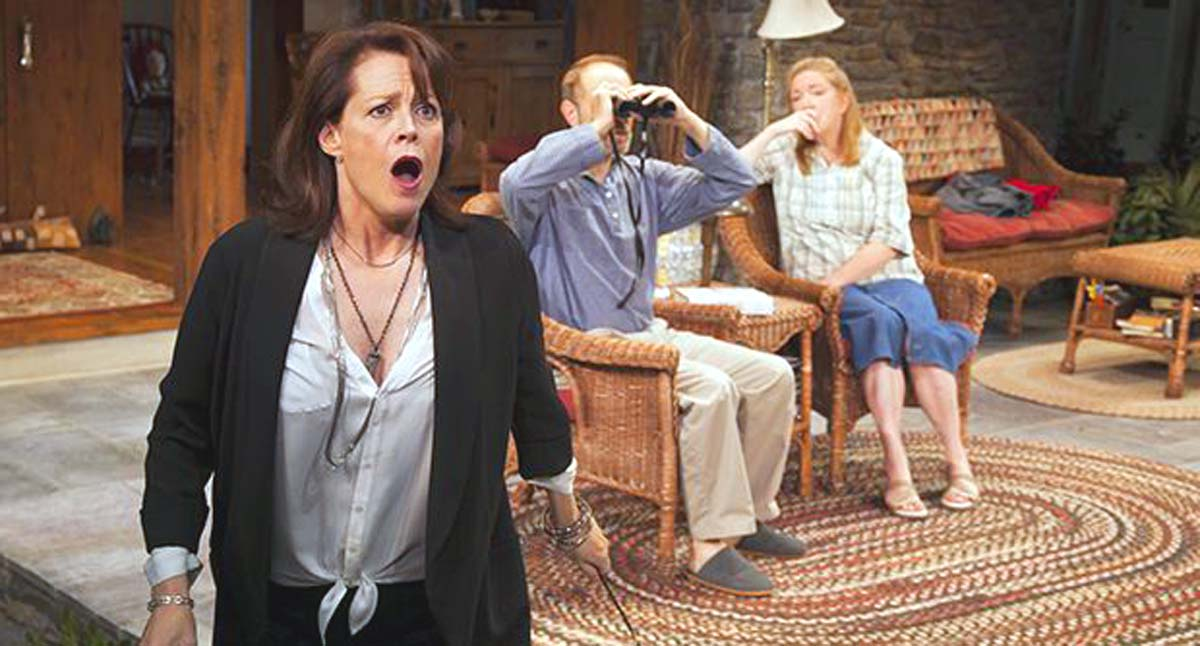 Sigourney Weaver Broadway play Vanya and Sonya and Masha and Spike