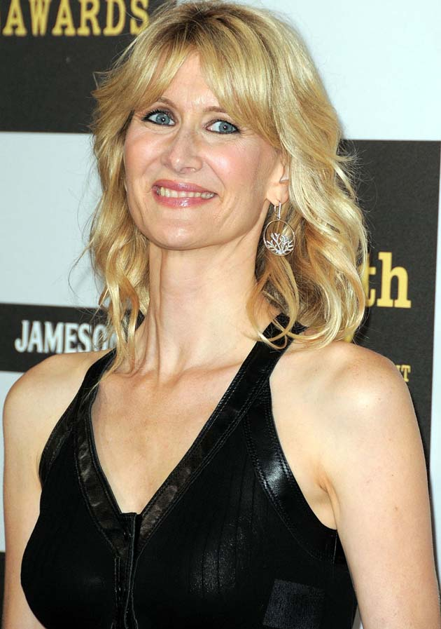 Laura Dern Spirit Awards