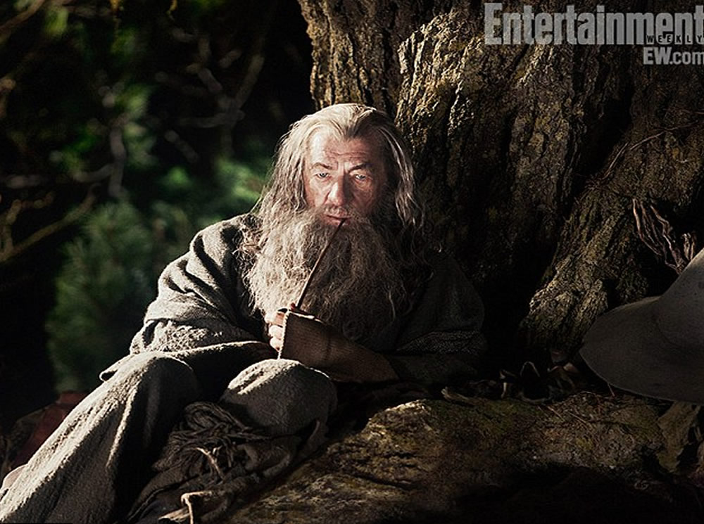 Ian McKellen Gandalf The Hobbit
