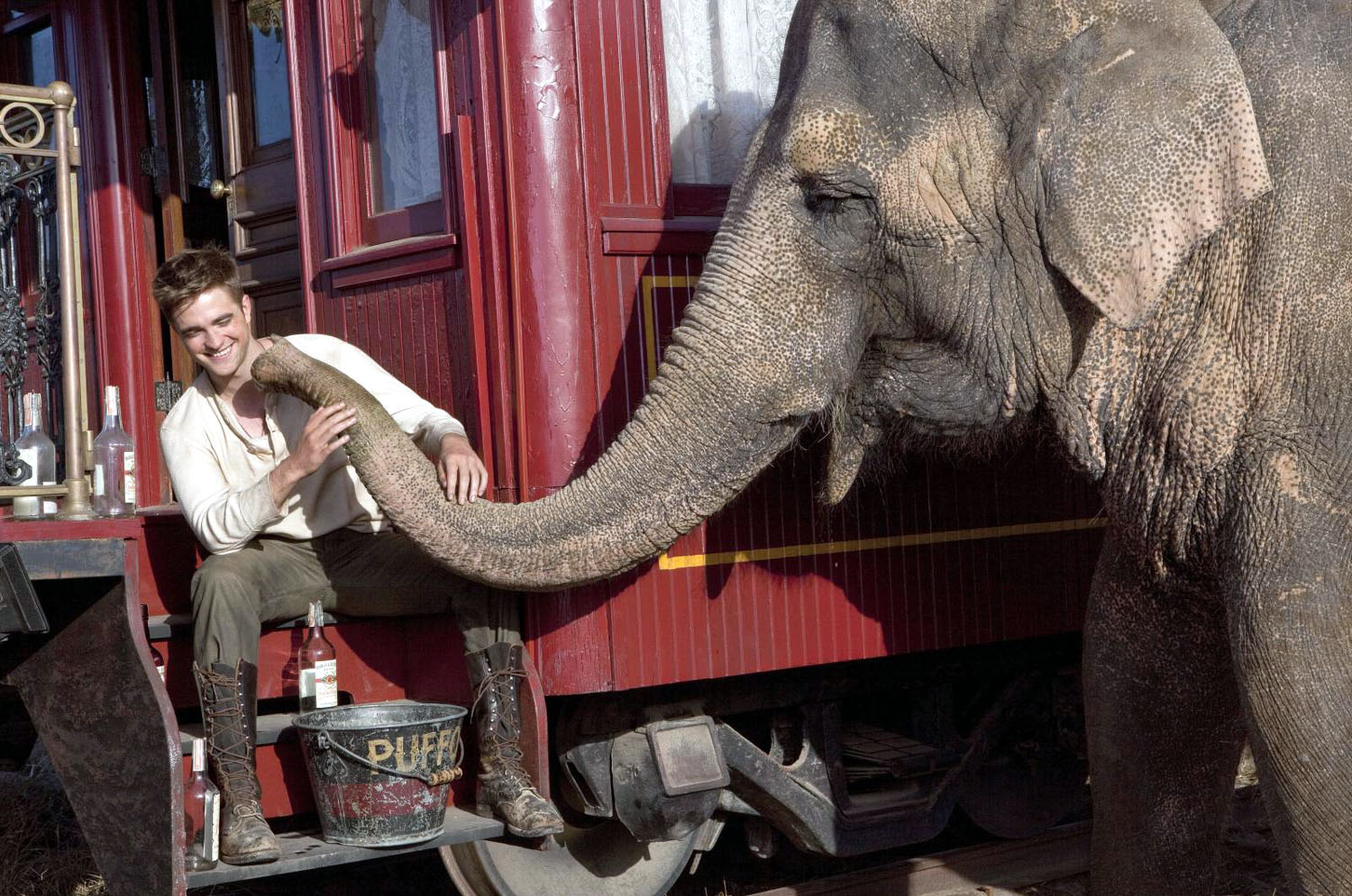 Water for Elephants Robert Pattinson, Tai, Rosie the Elephant